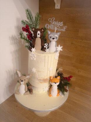 Onederland Birthday cake Winter wonderland